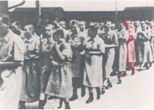 Éva in Ausschwitz, kahlgeschoren und in Häftlingskleidung