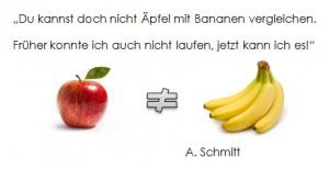 Zitat Schmitt 2